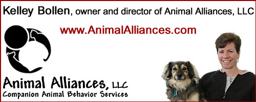 animal_alliances